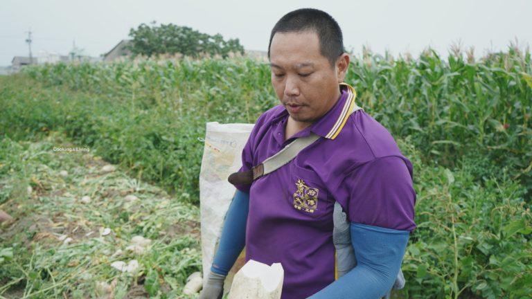 雲林東勢 - 吳家禎 / 有機玉米筍、小黃瓜、蘋果絲瓜